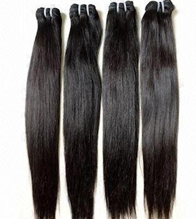 """Malaysian """"Silk Tail"""""""